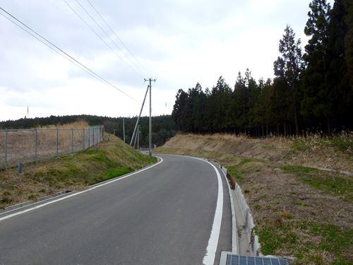 sakashita1.jpg