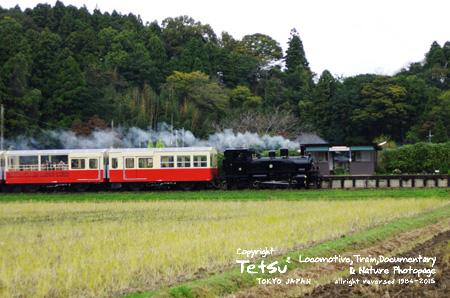 20151110川間