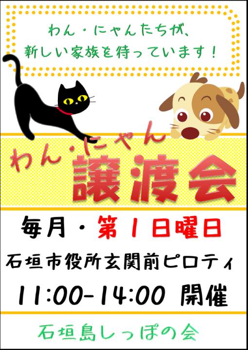 譲渡会チラシ2016 - コピー