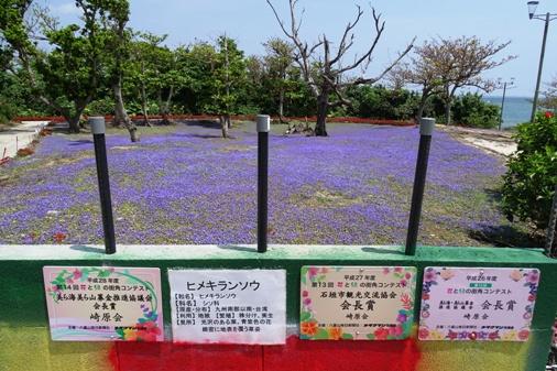 DSC04993 - 崎原公園