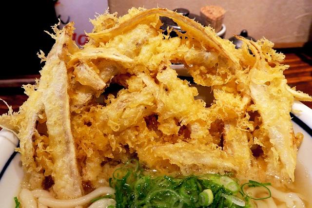 160213-麺之助ー-009-S