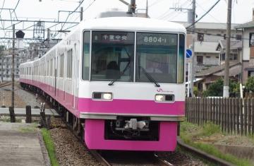 IMGP8485.jpg