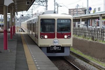 IMGP8492.jpg