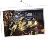 frame05-Y-DM02
