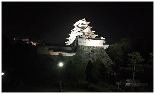 night_himegijo02.jpg