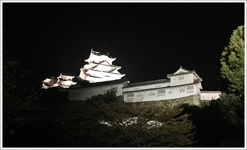 night_himegijo04.jpg