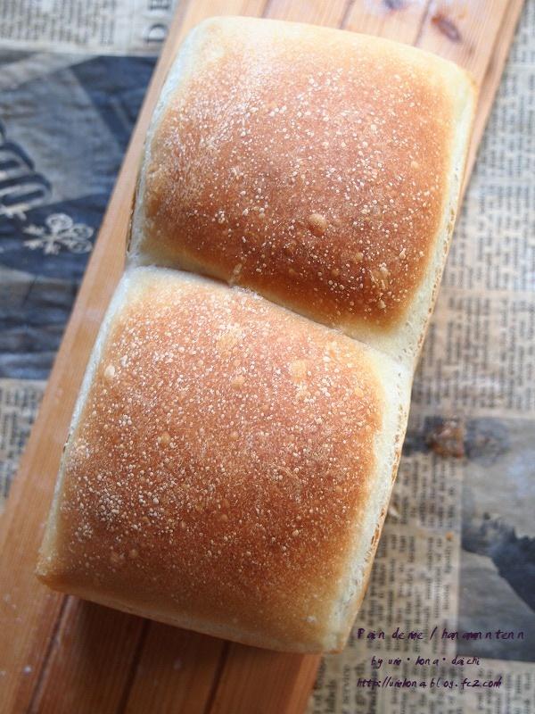 いろいろパン4