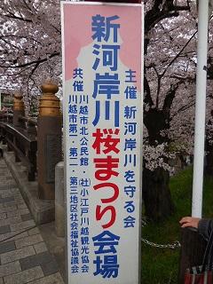 kawasaku1.jpg