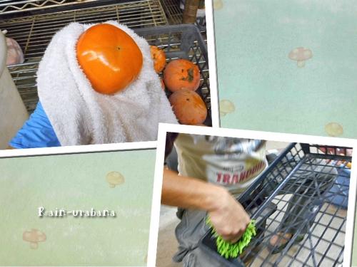 柿磨き&ケース磨き