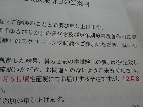 DSC02707.jpg