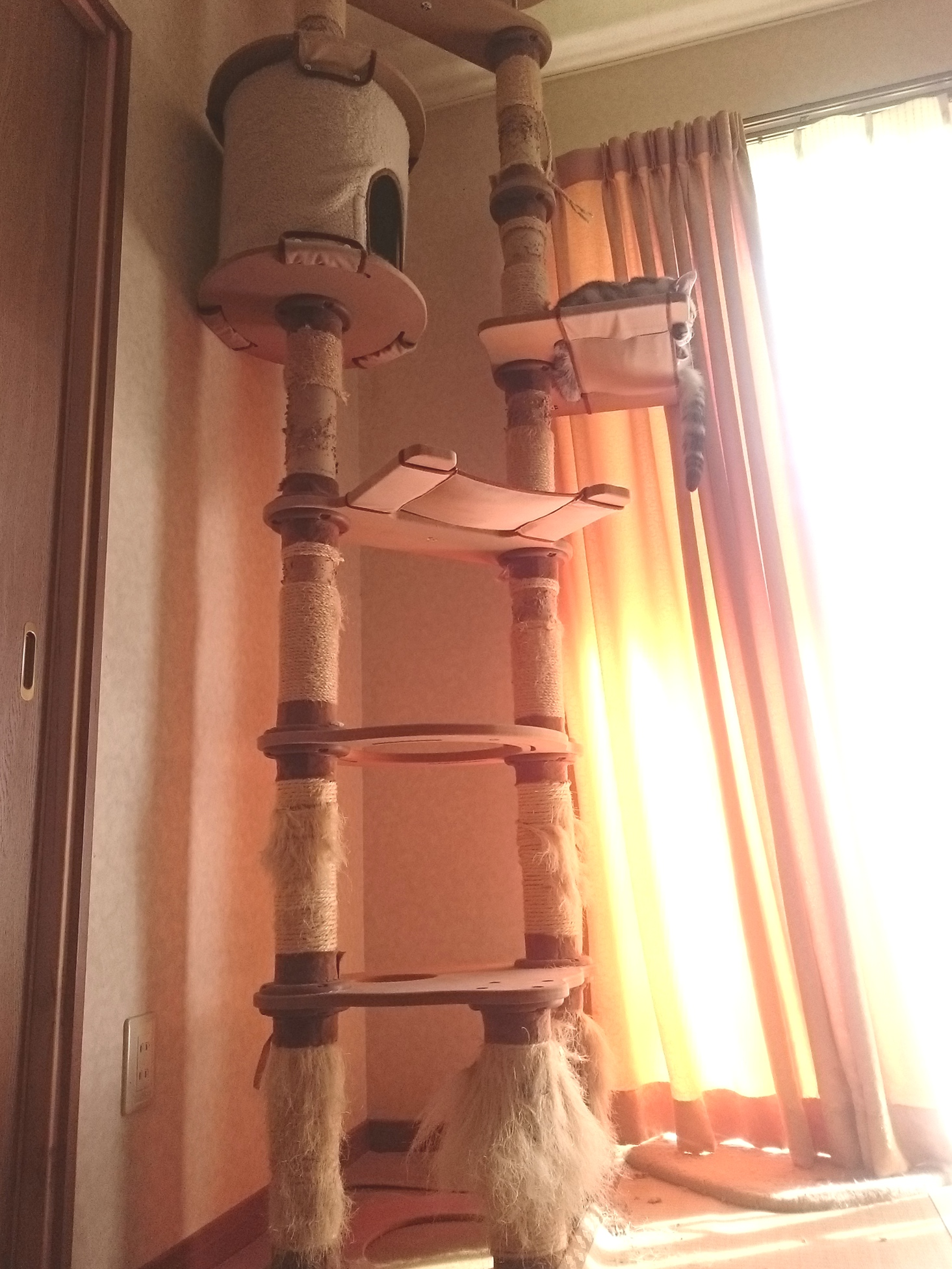 20151025-CatTower_Before-X01.jpg
