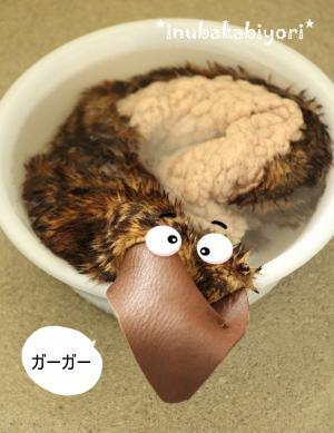 torisentaku2_s.jpg