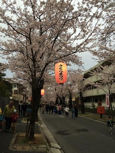 160402桜まつり④