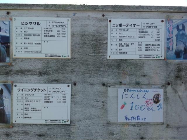 北海道3の17