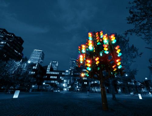 信号機の木