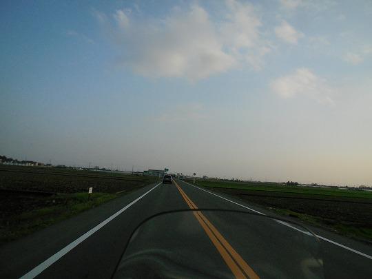 DSCN9274.jpg