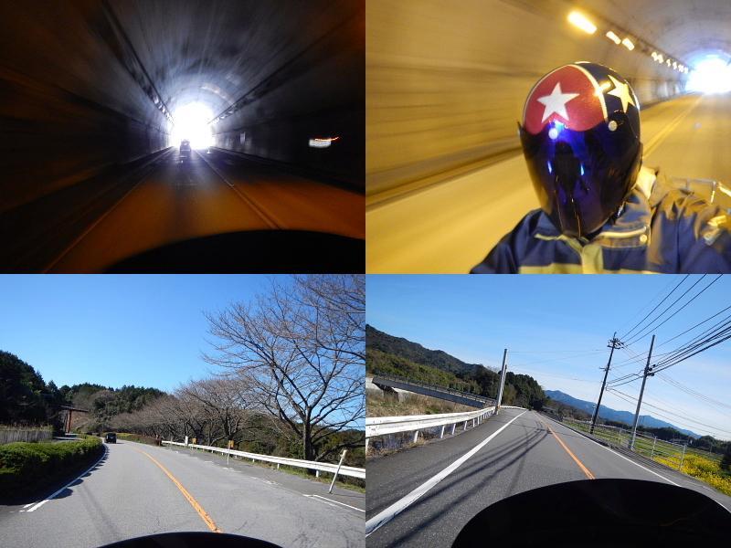 うちキャン13