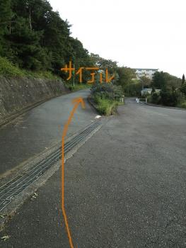 修善寺~CSC_7186