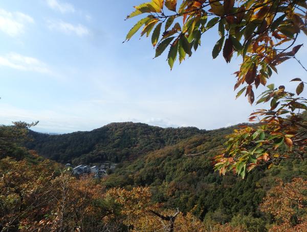 27_11_22 足利の織姫公園 3