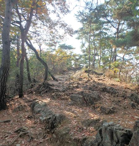 27_11_22 足利の織姫公園 5