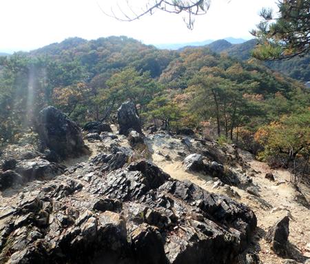 27_11_22 足利の織姫公園 6