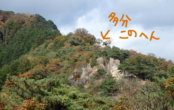 27_11_22 足利の織姫公園 8