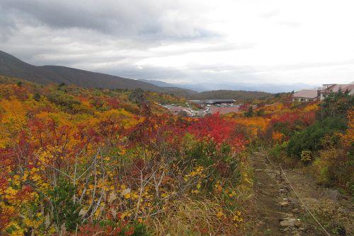 須川温泉の紅葉