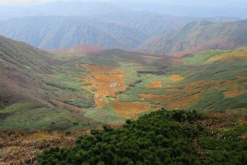 焼石岳北側の草原