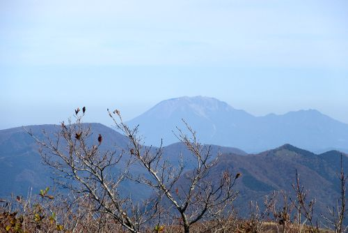 大山を望む