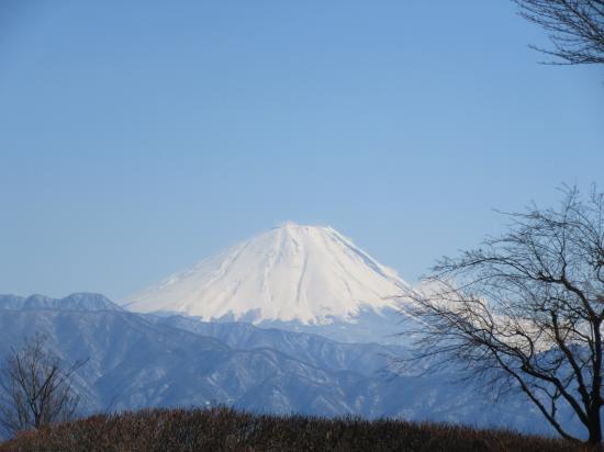 2016.3.15神奈川・山梨3