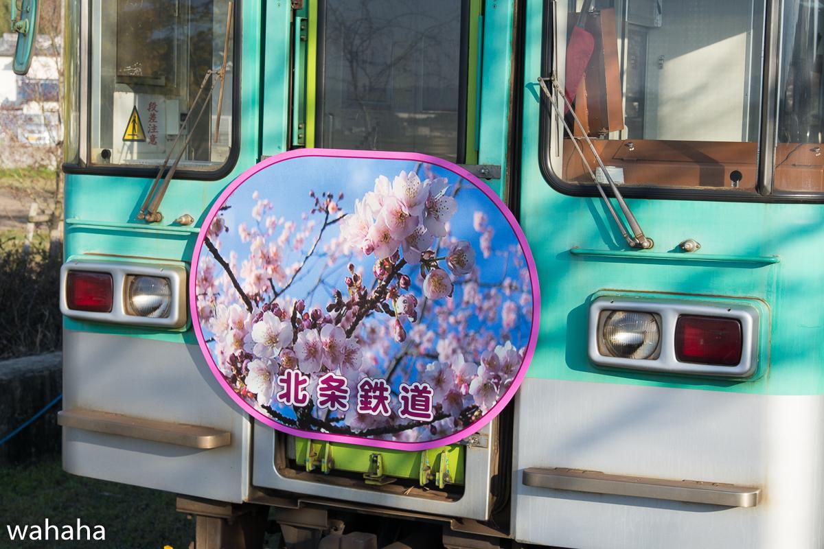 280326houjou-10-2.jpg