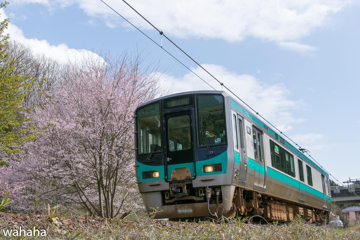 280402kakogawasen-01.jpg