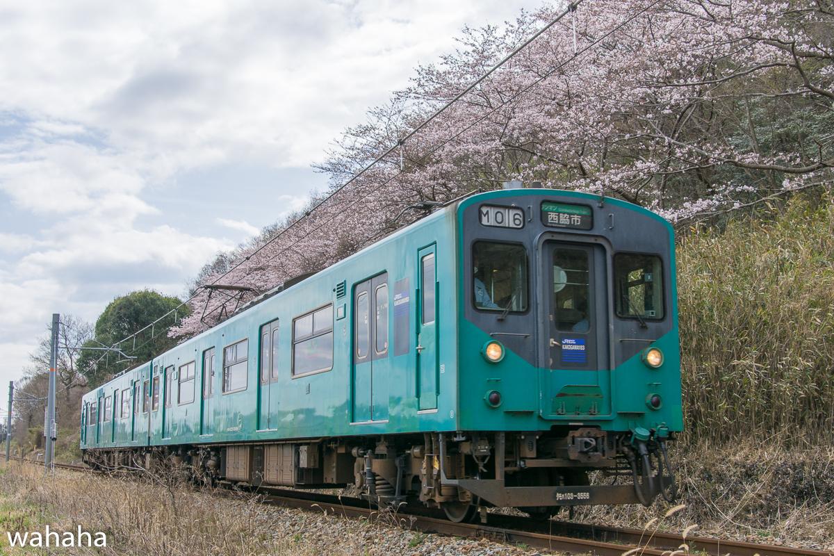 280402kakogawasen-02.jpg
