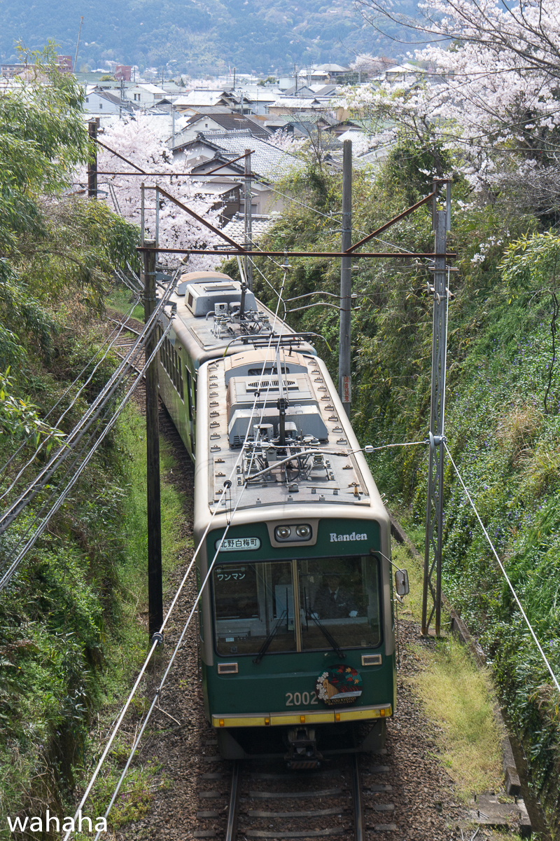 280405keifuku-01-1.jpg