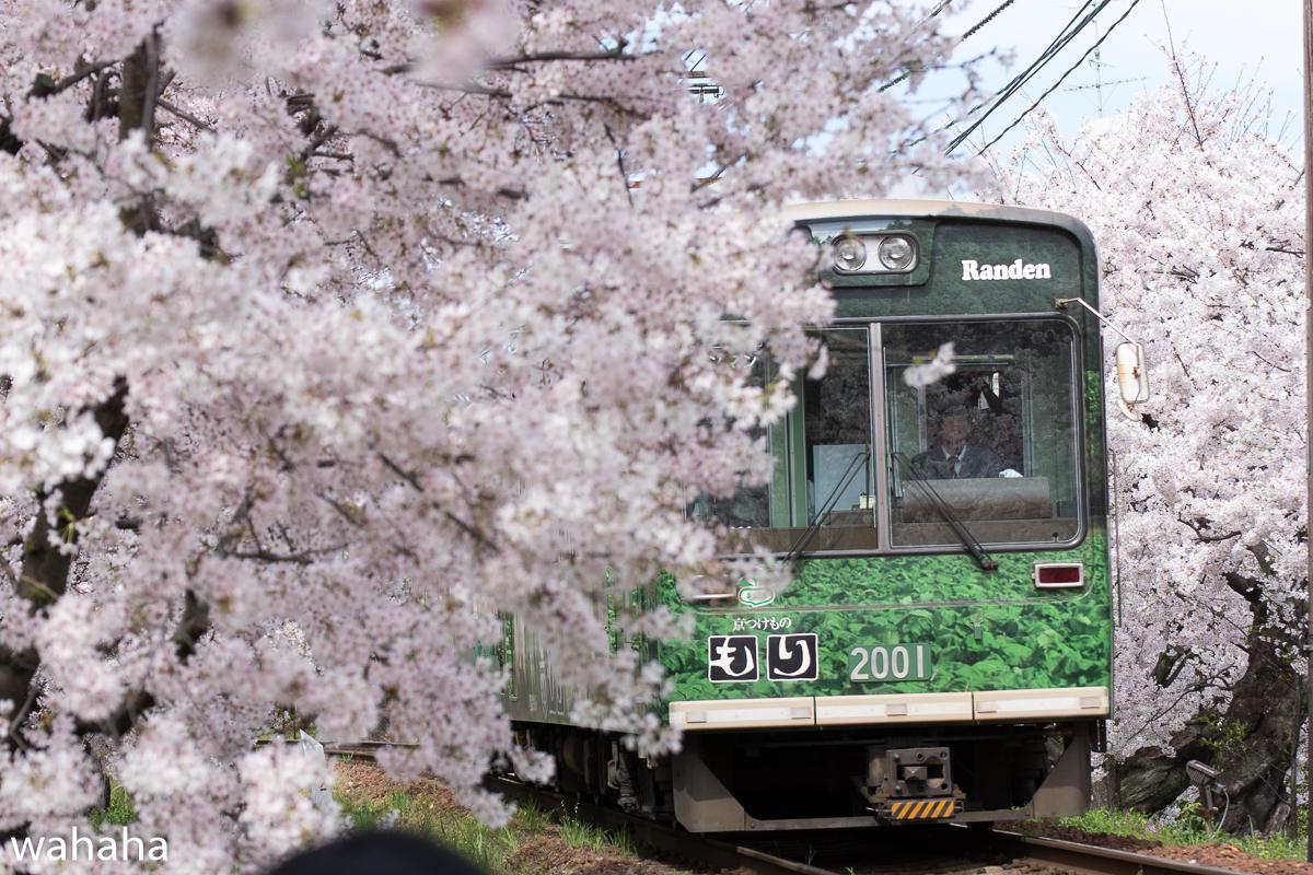 280405keifuku-02-1.jpg