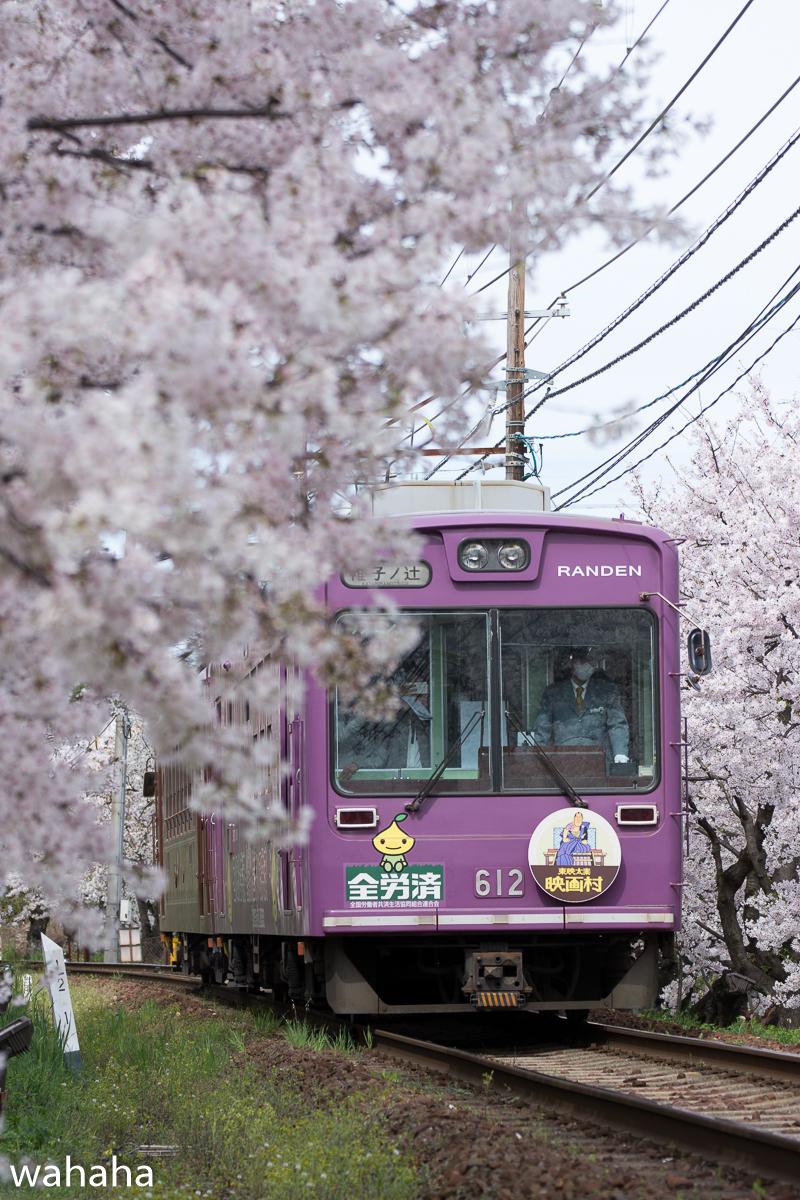 280405keifuku-02-2.jpg