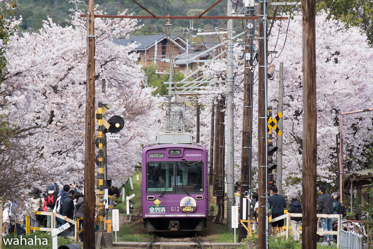 280405keifuku-03-1b.jpg