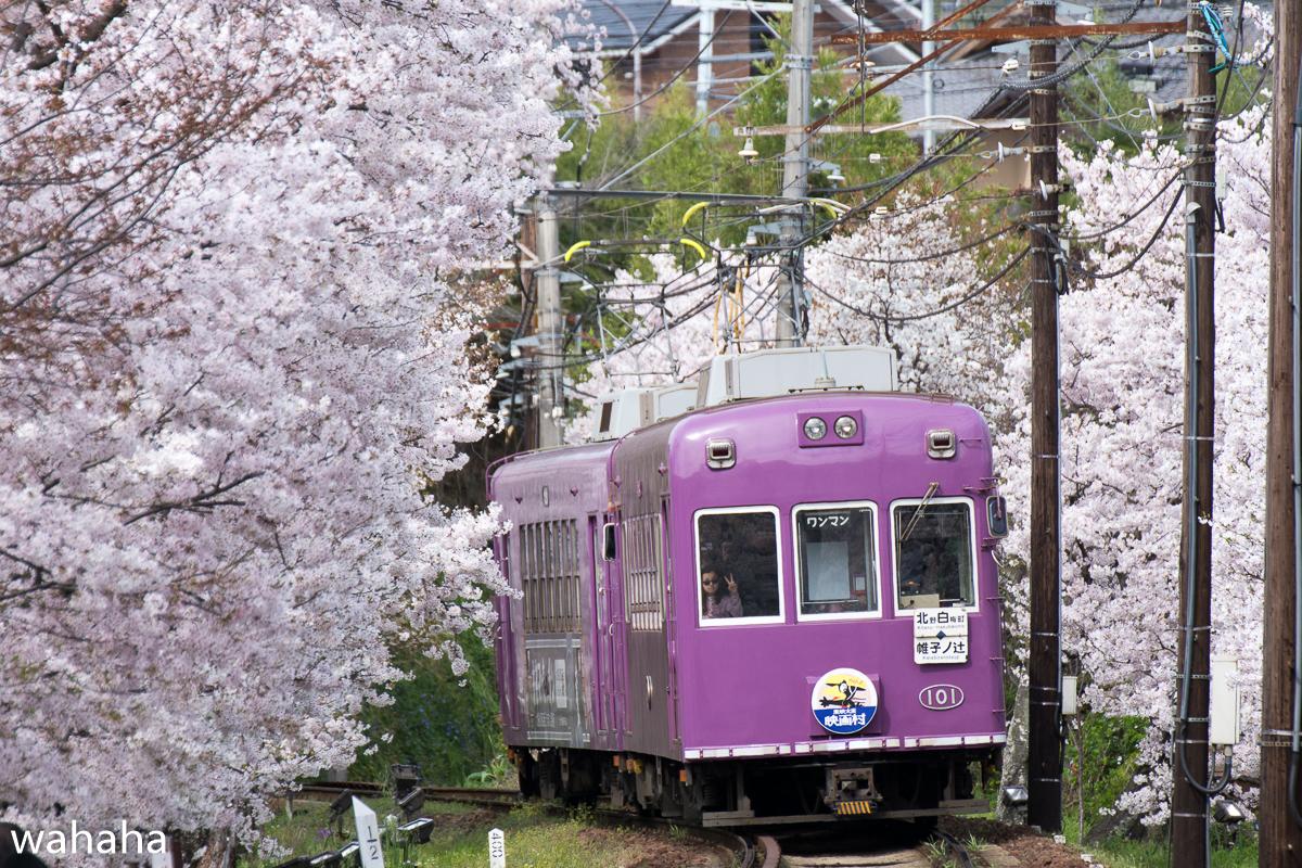 280405keifuku-03-2.jpg