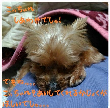 20151116_070603.jpg