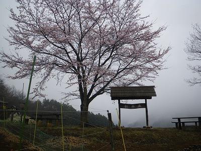 仁の丘農園
