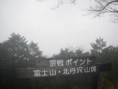 どこに富士山が