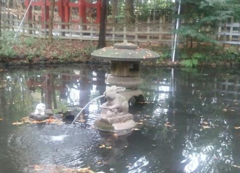 151109_142452調神社神池