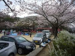 憩いの森公園~共演会20160402-01b