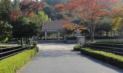 鏡山公園でアコーディオン20151024-1