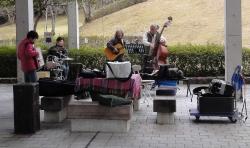 鏡山公園でアコーディオン20160327-2