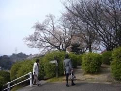 音戸大橋20160330-8