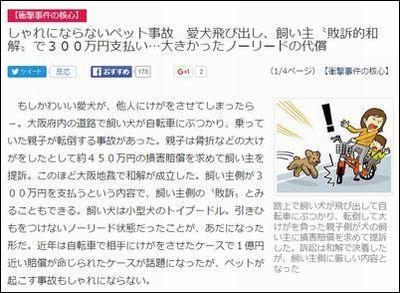 わんこニュース002
