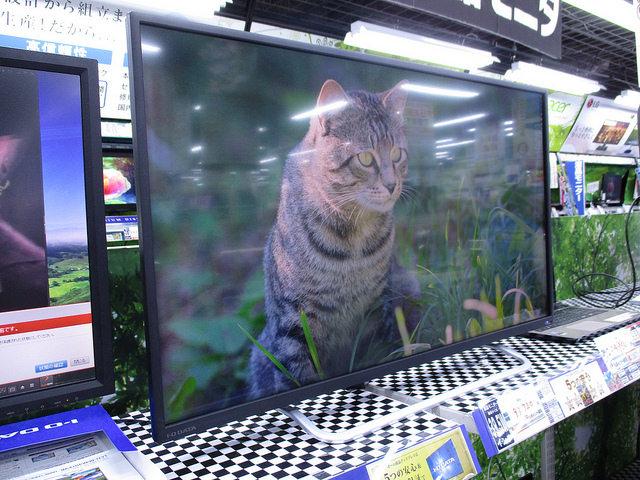 LCD-M4K401XVB_06.jpg