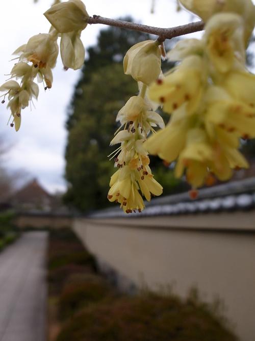 tosamizuki_16_4_3_2.jpg