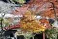 ⑦瀧安寺と赤い橋と紅葉
